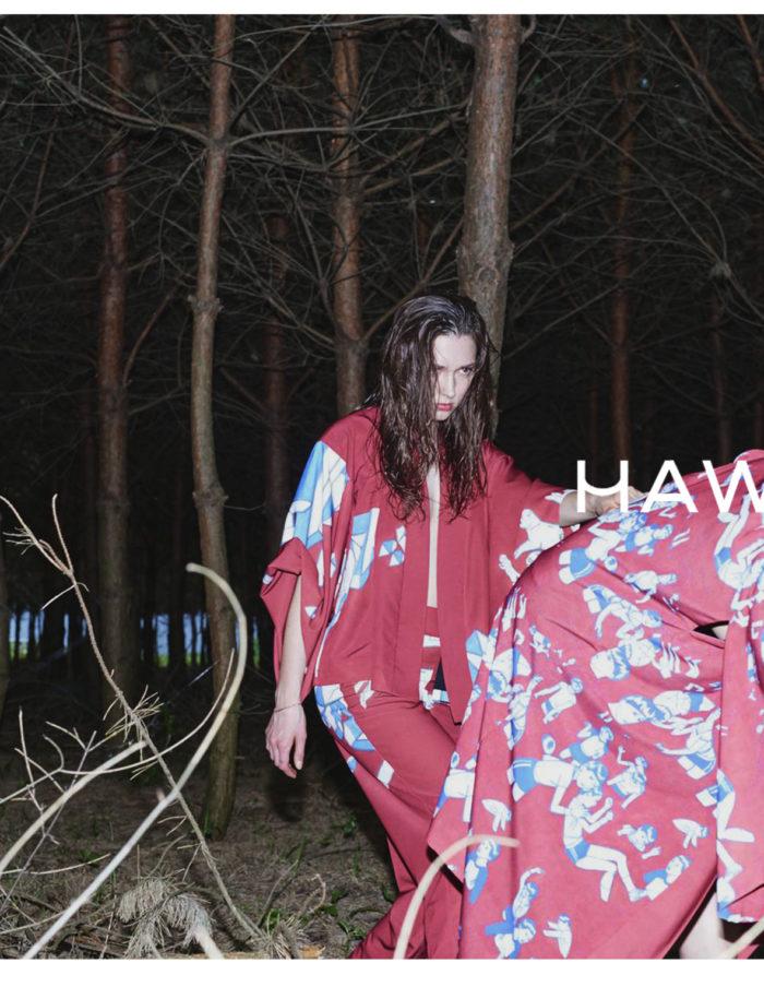 HAWROT_NET18