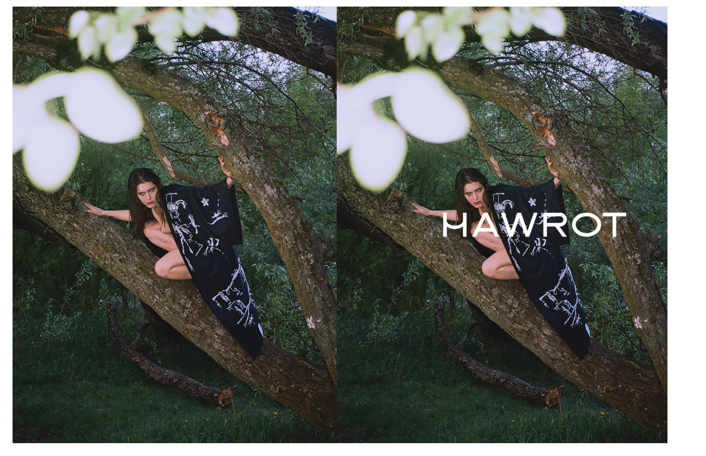 HAWROT_NET29