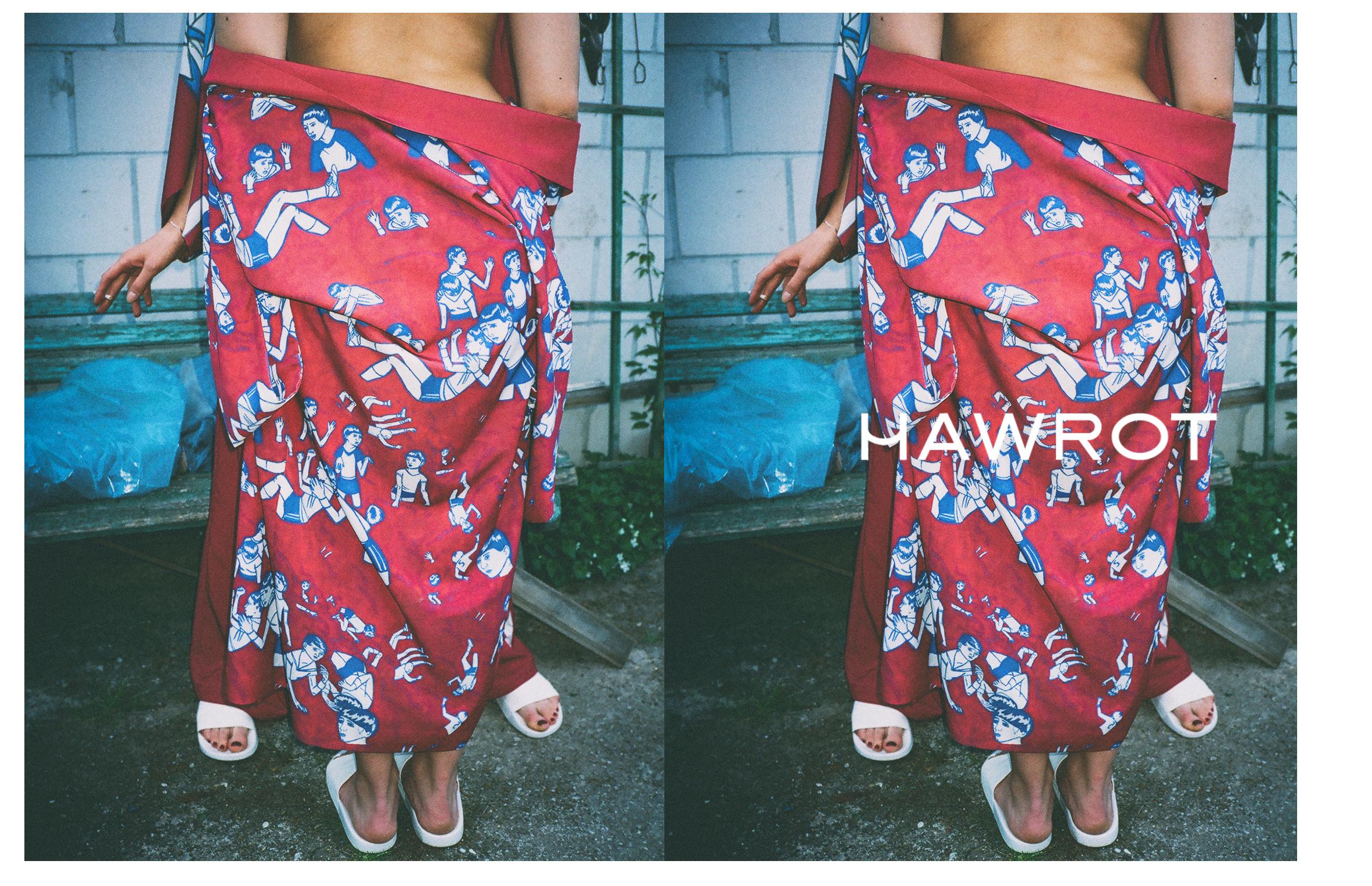 HAWROT_NET3