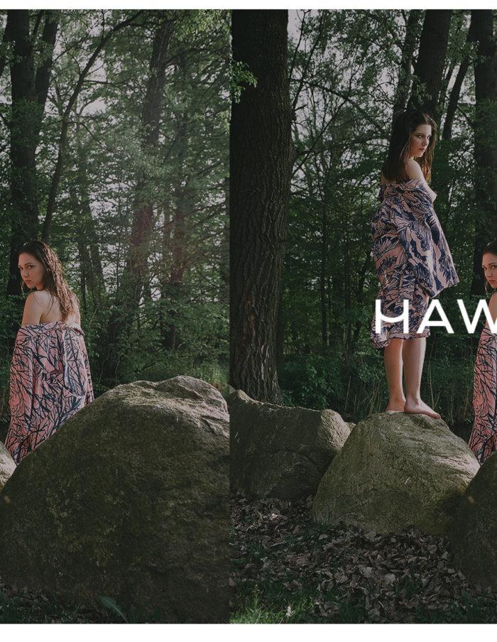 HAWROT_NET33