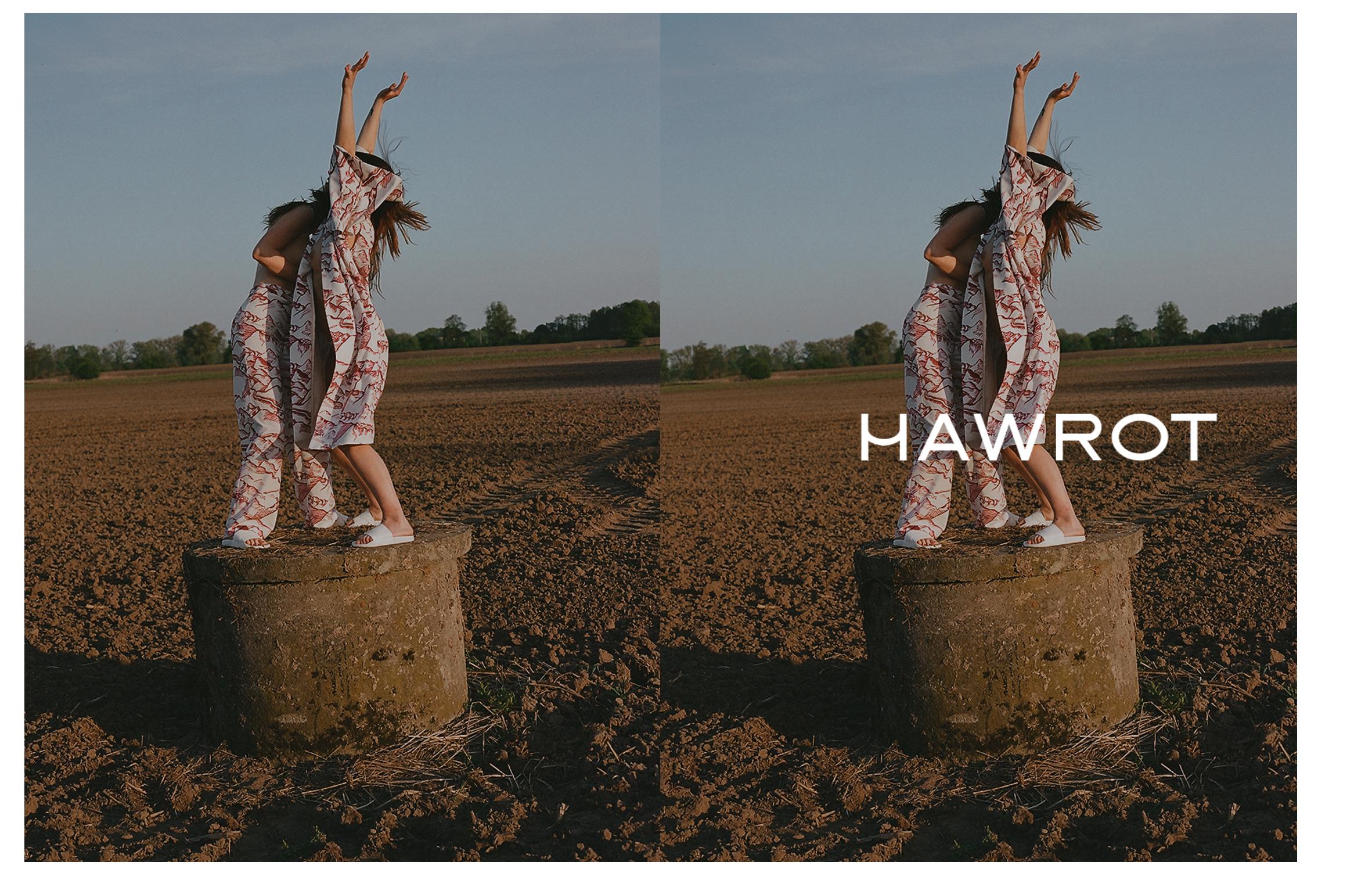 HAWROT_NET35