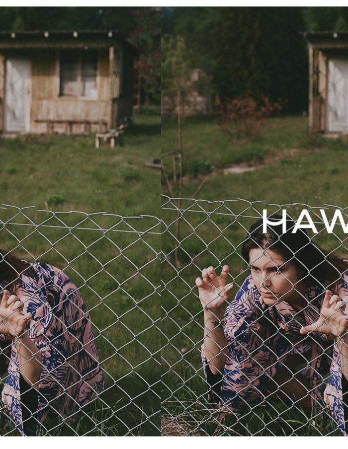 HAWROT_NET44
