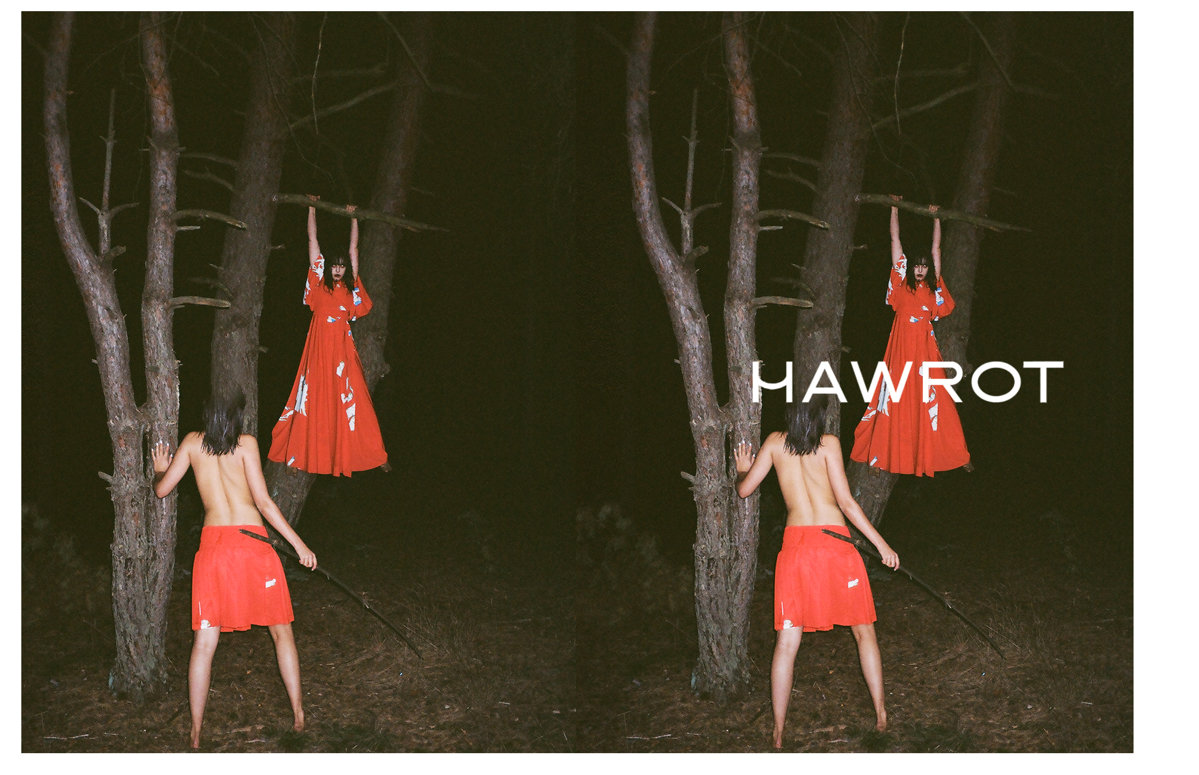HAWROT_NET6